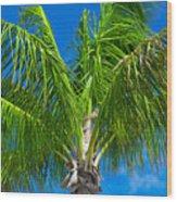 Tropical Palm Portrait Wood Print