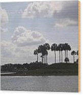 Tropical Palms And Clouds Wood Print