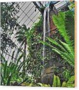 Tropical Paradise Falling Waters Buffalo Botanical Gardens Series   Wood Print