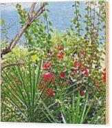 Tropical Red Against Cool Mountain Mists Wood Print