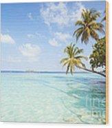 Tropical Sea In The Maldives - Indian Ocean Wood Print