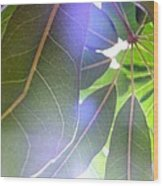 Tropical Shade Wood Print