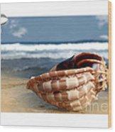 Tropical Shell 2 Wood Print
