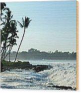 Tropical Shore Wood Print