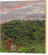 Tropical Sunset Landscape Wood Print