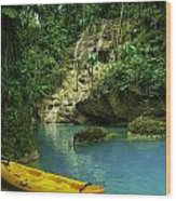 Tropical Waterfall Wood Print by Jennifer Burley