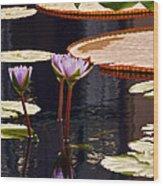 Tropical Waters Floral Charm Wood Print