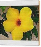 Tropical Yellow Blossom Wood Print