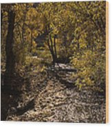 Trout Creek Wood Print