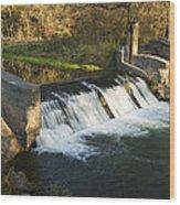 Trout Run Creek Dam 1 Wood Print