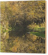 Trout Run Creek Fall 2 Wood Print