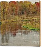 Trout Stream II- Textured Wood Print
