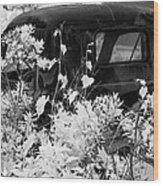 Truck Flowerpot - Infrared Wood Print