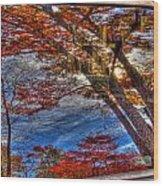 Truck Window Reflection 02 Wood Print