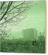 Truckee Meadows Wood Print