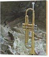 Trumpet N Canvas Wood Print