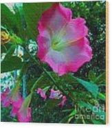 Trumpet Plant Wood Print by Annette Allman