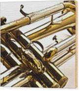 Trumpet Valves Wood Print