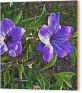 Trumpet Vine In Apache Junction-arizona   Wood Print