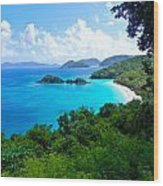 Trunk Bay Wood Print