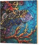Trunkfish - Male Wood Print