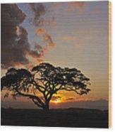 Tsavo Sunset Wood Print