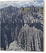 Tsingy De Bamaraha Madagascar Wood Print