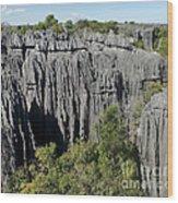 Tsingy De Bemaraha Madagascar 1 Wood Print