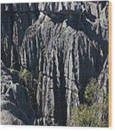 Tsingy De Bemaraha Wood Print