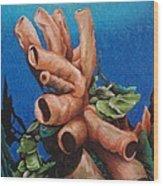 Tube Coral Wood Print