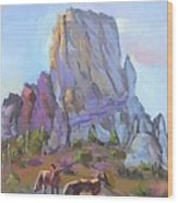 Tucson Butte With Two Coyotes Wood Print