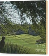 Tucson Foothills Golf Course Wood Print