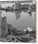Tufa In Black And White Wood Print