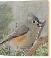 Tuffted Titmouse Early Spring Wood Print