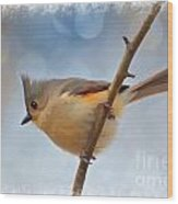 Tufted Titmouse - Digital Paint II With Frame Wood Print