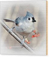 Tufted Titmouse Love  Wood Print