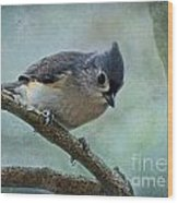 Tufted Titmouse With Snowflake Decorations Wood Print