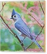 Tufted Titmouse With Spring Booms - Digital Paint II Wood Print
