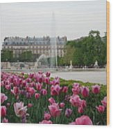Tuileries Garden In Bloom Wood Print by Jennifer Ancker