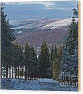Tulchan Estate - Early Winter Wood Print