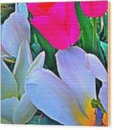 Tulip 35 Wood Print