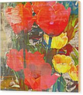 Tulip Abstracts Wood Print