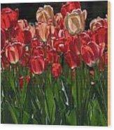 Tulip Bunch Wood Print