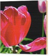 Tulip Extended Wood Print