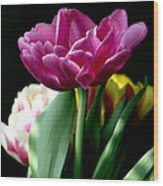 Tulip For Easter Wood Print