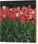 Tulip Forest Wood Print