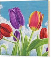 Tulip Garden Wood Print by Sarah Batalka