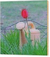 Tulip Hdr Wood Print