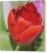 Tulip Heart Wood Print