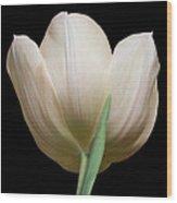 Tulip #2 Wood Print